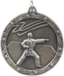 Karate - Shooting Star Medallion Karate Trophy Awards